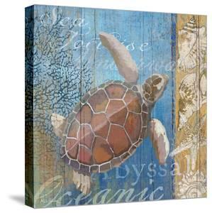 Turtle and Sea