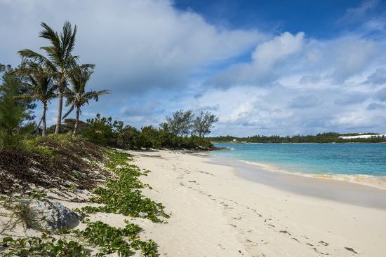 Turtle Beach St David S Island Bermuda North America Photographic Print By Michael Runkel Art