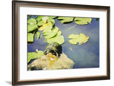 Turtle Pad-Roberta Murray-Framed Photographic Print