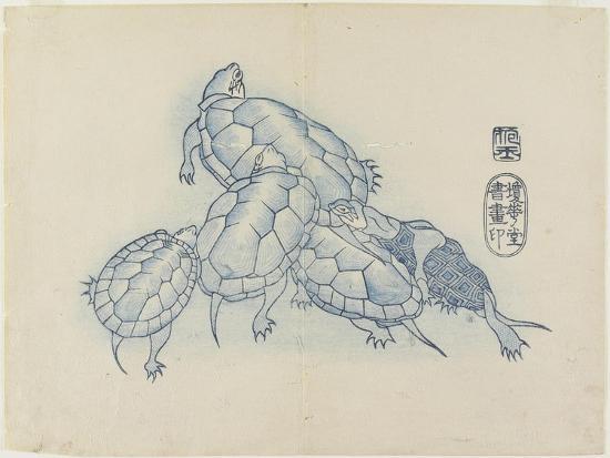 Turtles, C. 1830- Hogyoku-Giclee Print