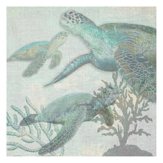 Turtles-Sheldon Lewis-Art Print
