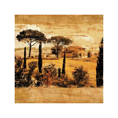 Tuscan Countryside I-Colin Floyd-Giclee Print