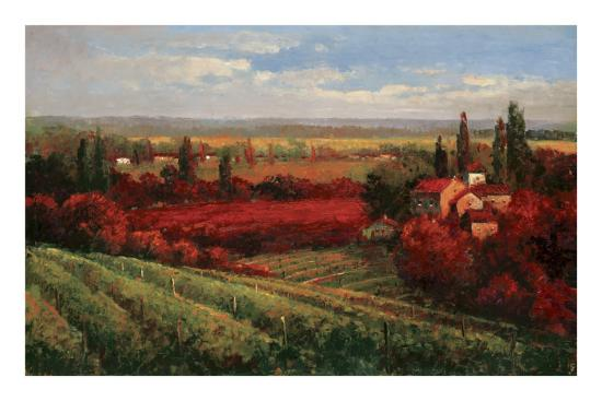 Tuscan Fields of Red-Matt Thomas-Art Print