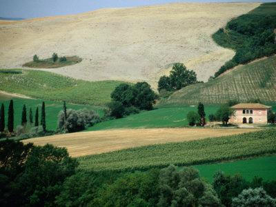 Tuscan Landscape Near San Gimignano, San Gimignano, Tuscany, Italy-Diana Mayfield-Photographic Print