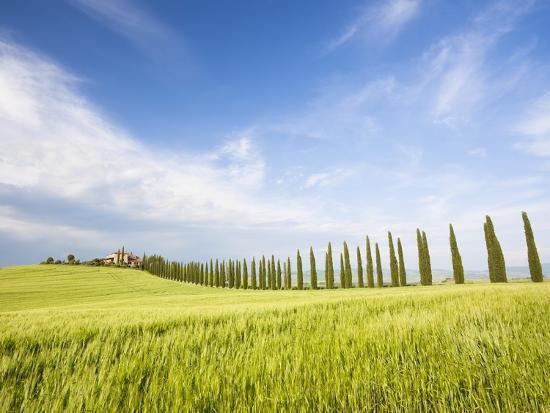 Tuscan landscape-Frank Lukasseck-Photographic Print