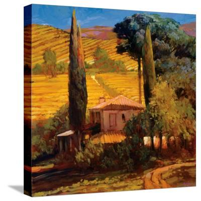 Tuscan Morning Light-Philip Craig-Stretched Canvas Print