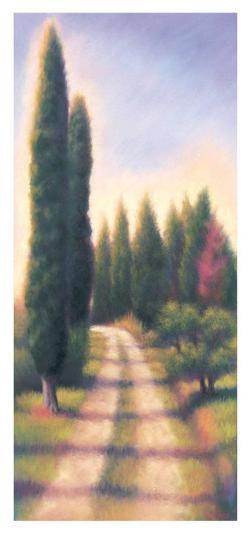 Tuscan Road I-David Wander-Art Print