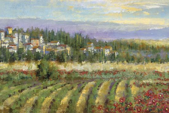 Tuscan Spring II-Michael Longo-Art Print