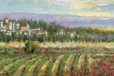 https://imgc.artprintimages.com/img/print/tuscan-spring-ii_u-l-f1vjhl0.jpg?p=0