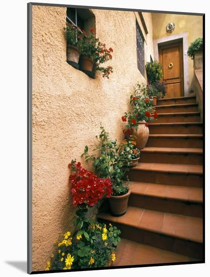 Tuscan Staircase, Italy-Walter Bibikow-Mounted Photographic Print