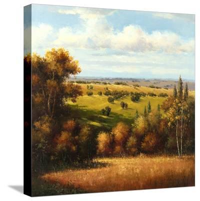 Tuscan Vista-Arcobaleno-Stretched Canvas Print