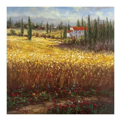 Tuscan Wheat-Hulsey-Art Print