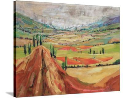 Tuscany III--Stretched Canvas Print
