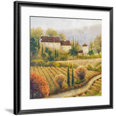 Tuscany Vineyard I-Michael Marcon-Framed Art Print