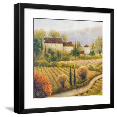 Tuscany Vineyard I-Michael Marcon-Framed Art Print