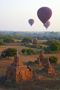 Hot Air Balloons Above Bagan (Pagan), Myanmar (Burma), Asia by Tuul