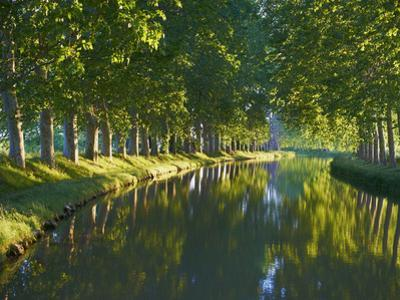 Navigation on Canal du Midi, UNESCO World Heritage Site, Aude, Languedoc Roussillon, France by Tuul