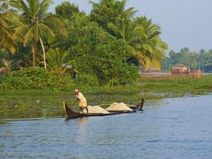 Small Boat on the Backwaters, Allepey, Kerala, India, Asia by Tuul