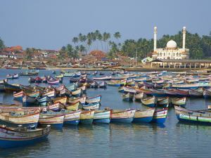 Vizhinjam, Fishing Harbour Near Kovalam, Kerala, India, Asia by Tuul