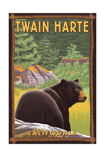 Twain Harte, California - Black Bear in Forest-Lantern Press-Art Print