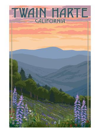 https://imgc.artprintimages.com/img/print/twain-harte-california-spring-flowers_u-l-q1gpu9i0.jpg?p=0