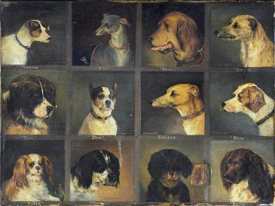 Twelve Favourite Dogs, 1883-Edwin Frederick Holt-Giclee Print