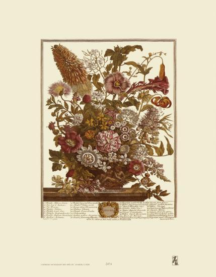 Twelve Months of Flowers, 1730, August-Robert Furber-Art Print