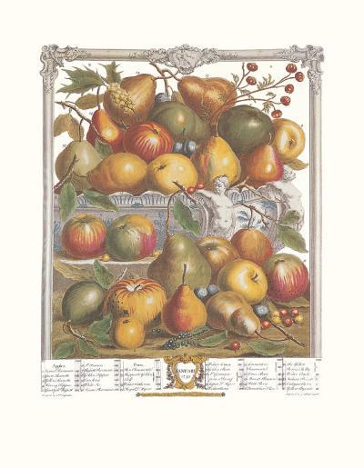 Twelve Months of Fruits, 1732, January-Robert Furber-Art Print