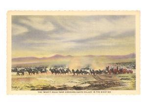 Twenty-Mule Team, Death Valley, California