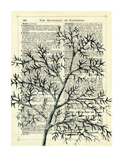 Twigs 1-Marion Mcconaghie-Art Print
