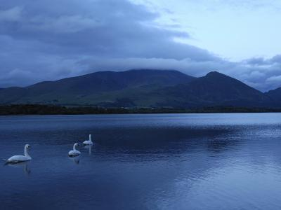 Twilight at Bassenthwaite Lake, Lake District National Park, Cumbria, England, United Kingdom-Rob Cousins-Photographic Print