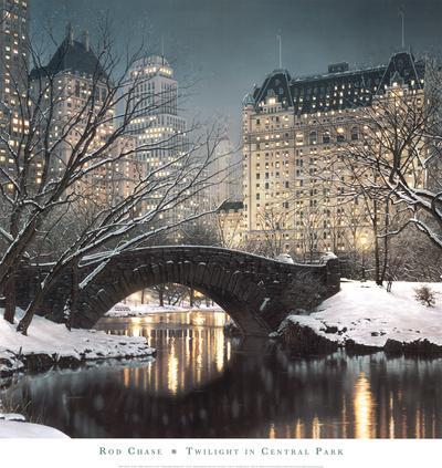 https://imgc.artprintimages.com/img/print/twilight-in-central-park_u-l-f33bo30.jpg?p=0