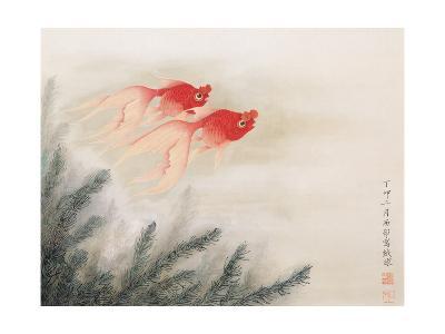 Twin Fish-Hsi-Tsun Chang-Giclee Print