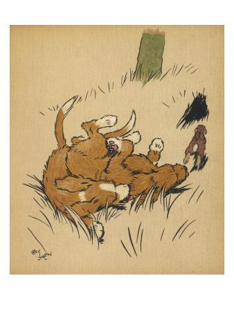 Twin Puppies Fall Over--Giclee Print