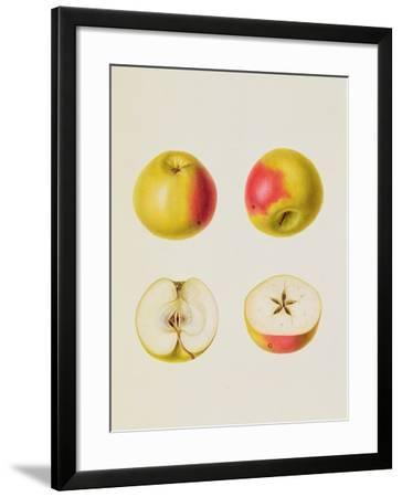 Two Apples Sectioned--Framed Giclee Print