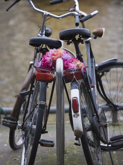 Two Bicycles with a Flower Chain, Amsterdam, Netherlands, Europe-Amanda Hall-Photographic Print