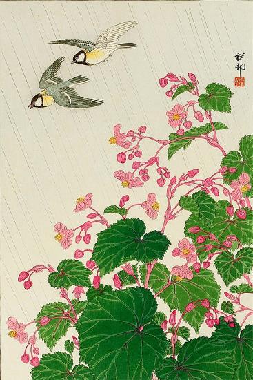 Two Birds and Begonia in Rain-Koson Ohara-Giclee Print