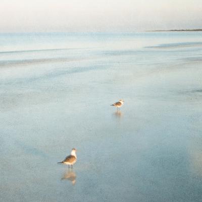 Two Birds on Beach-John Juracek-Photographic Print