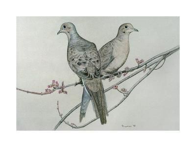 Two Birds on Branch-Rusty Frentner-Giclee Print