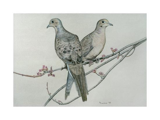 Two Birds on Branch-Rusty Frentner-Giclee Print