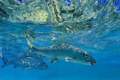 Two Bonefish in Blue Water Mirror Images of One Another-Mike Rivken-Photographic Print