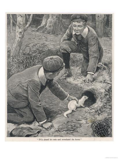 Two Boys in Caps Set a Ferret Down a Rabbit Hole--Giclee Print