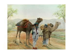 Two Boys Walk with their Arabian Camels Down a Dirt Road