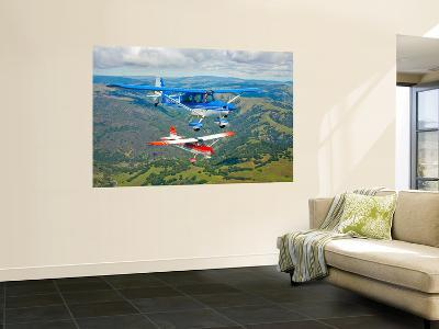 Two Champion Aircraft Citabrias in Flight-Stocktrek Images-Wall Mural