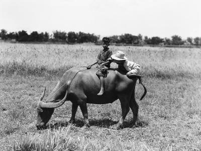Two Children on Water Buffalo, One Climbing on Rear End, Near Manila-H^ Armstrong Roberts-Photographic Print