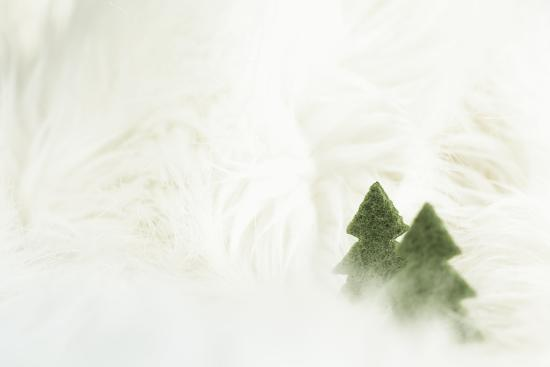 Two Christmas Trees in Stylised Winter Landscape - Softy and Softly-Petra Daisenberger-Photographic Print