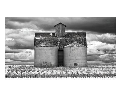 https://imgc.artprintimages.com/img/print/two-corn-cribs_u-l-f8cprc0.jpg?p=0