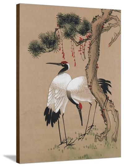 Two Cranes--Stretched Canvas Print
