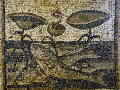 Two Fish Between the Waterlilies by Daphne, Mosaic, Roman Civilisation, 5th Century--Giclee Print