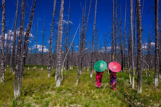 Two Girls with Parasols in Burnt Forest, Yellowstone National Park, Wyoming-Laura Grier-Photographic Print